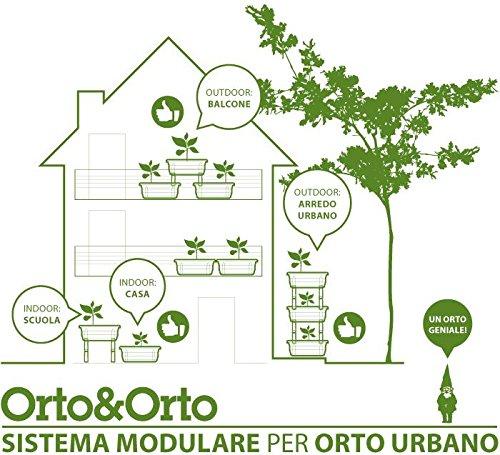 Maceta para huerto urbano sin sistema modular combinable.: Amazon ...