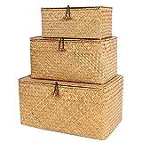 FEILANDUO Juego de 3 cestas con tapa para decoración del