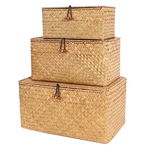 FEILANDUO 3 Stück Aufbewahrungsbox mit Deckel Algen gewebter kosmetischer Aufbewahrungskorb Desktop Wohnzimmer Organisationskorb S, M, L