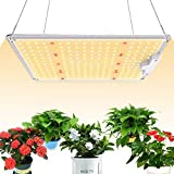 Spritool S-1000 LED Grow Light Compatible with Samsung LM301B Diodes & MeanWell Driver Grow Lights Full Spectrum for Indoor Plants Seeding Veg Flower Growing Lamp