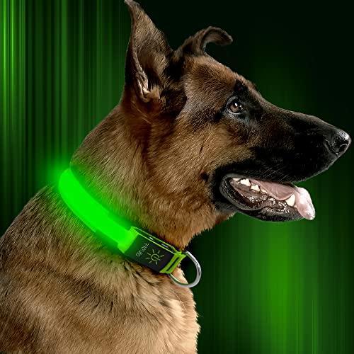 HiGuard LED Dog Collar