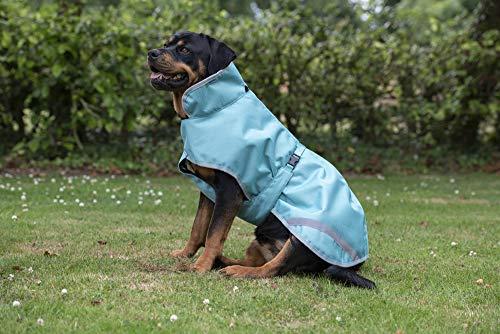 Bucas Freedom Dog Rug 40 lagoon