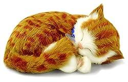 Perfect Petzzz 65431– Stofftierinteraktiv Katze–Tabby–Orange–Tier, das wie in der Realität atmet–25cm