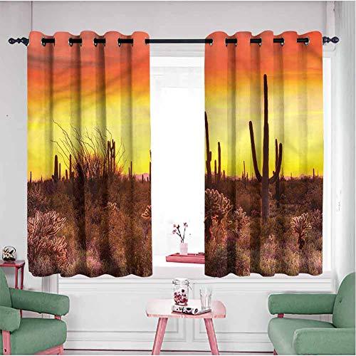Saguaro - Paneles curtianos cortos de 101,6 cm de largo, cactus y malas hierbas tierras oscuras de doble capa (55 x 40 pulgadas, multicolor)