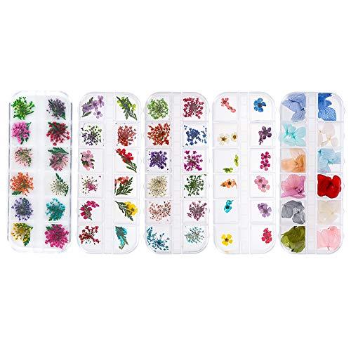 5 Box Nagel Getrocknete Blume, Getrocknete Blume Nail Art, Getrocknete Blumen Nagelkunst Aufkleber, 3D Nail Art Sticker für Nägel Dekoration (60 Blumen)