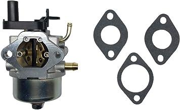 Kit carburatore per carburatore Briggs and Stratton 694202 693909 692648 499617 498170 497586 498254 497314 497347 497410 799872 790821 498255 498966 698444 Bestice