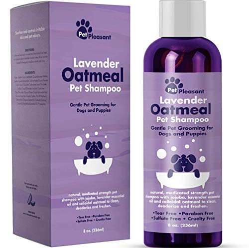 Honeydew Kolloidales Haferflocken Hundeshampoo mit reinem Lavendel Ätherische Öle - Keine Träne Shampoo für trockene juckende Haut Relief - Pet Odor Eliminator - Pflegeshampoo