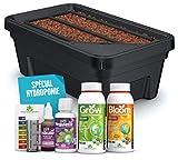 Easy Hydroponics - Mini Garden 600 - Kit complet pour la culture hydroponique