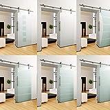 DURADOOR® Puerta corredera de cristal ESG en diseño de 10 tiras, 2050 mm x 900 mm x 10 mm, sistema de puerta corredera interior, herrajes