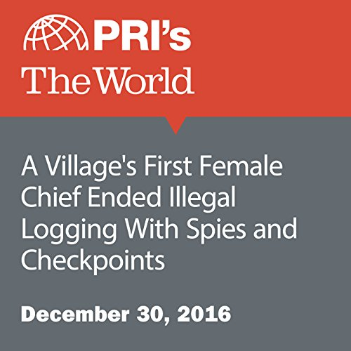 A Village's First Female Chief Ended Illegal Logging With Spies and Checkpoints audiobook cover art