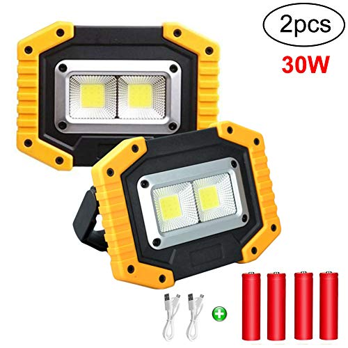 longdafei 2-Pack Portable LED Work Light, Rechargeable Floodlights with USB,Spotlight Waterproof Outdoor for Car Repairing Camping Traveling Fishing and Job Site Lighting