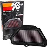 K&N Engine Air Filter: High Performance, Premium, Powersport Air Filter: Fits 2016-2019 KAWASAKI (ZX1000 Ninja ZX-10R, ABS, ABS KRT Edition, KRT Edition, SE) KA-1016R