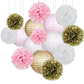 Pink Gold Party Decorations Pink Gold Paper Lanterns and Pom Poms Flowers for Birthday Party Baby Showers Engagement Tea Party Decor 15PCS