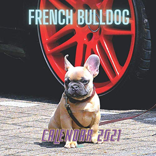 French Bulldog Calendar 2021: Dog Breede Calendar | Monthly Journal (Calendars 2021)