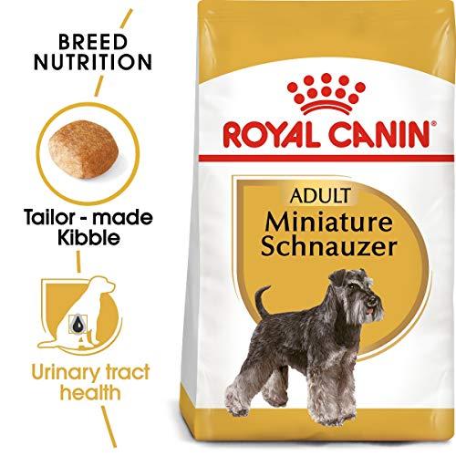 Royal Canin Schnauzer - Pienso para Schnauzer 3Kg
