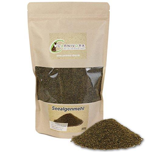 Carnivora Seealgenmehl 500g - Barf - Nahrungsergänzung für Hunde - 100% natürliche Seealgen (Ascophyllum Nodosum) - ideal als Jod Ergänzung zum Barfen (als Zusatz)