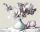 N\A Kit De Pintura Niños Pintura por Número De Kit DIY Regalos Pinturas con Numeros para Adultos Acrilico Pintura Kit Flores Blancas Naturaleza Muerta with Frame