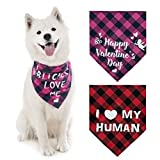 PUPTECK Dog Bandana - 2 Pack Sweet Plaid Triangle Bibs Scarf Accessories for Dogs Cats Pets, I Love My Human, Super Soft Scarf, Red and Pink
