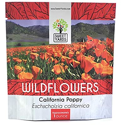 California Poppy Wildflower Seeds - Orange