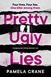 Pretty Ugly Lies: a gripping and chilling domestic noir (Eng