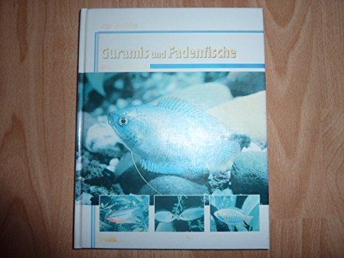 Ihr Hobby Guramis und Fadenfische