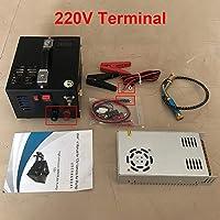 Dong-WW 圧力計 220Vトランス車両の高圧12 Vを含む12V 4500psi 300bar 30mpa PCP航空自動車圧縮機小型PCPポンプ 診断工具 (Voltage : 220V Terminal)