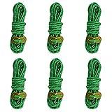 Azarxis Tensores de Tiendas de Campaña + Cuerda Reflectante 6 PCS para Toldo Refugio (Verde - 6 Pcs)