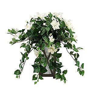 House of Silk Flowers Faux Trailing Hibiscus in Black Wood/Metal Planter