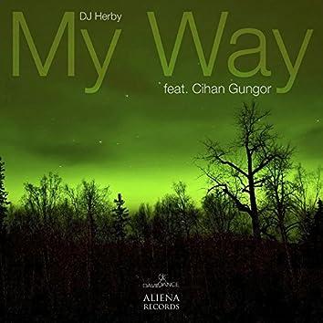 My Way (feat. Cihan Gungor) - Single