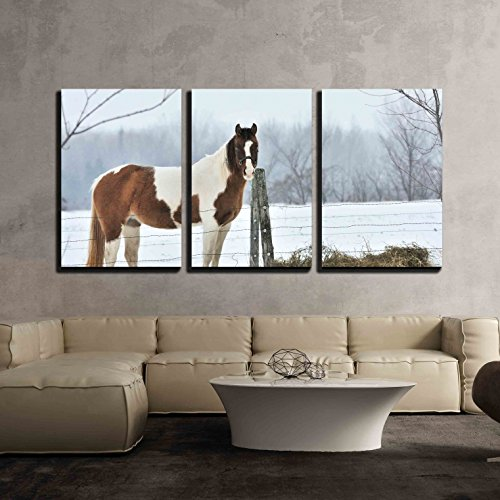 wall26 - 3 Piece Canvas Wall Art - Pinto and Hay - Modern Home Art Stretched and Framed Ready to Hang - 16'x24'x3 Panels