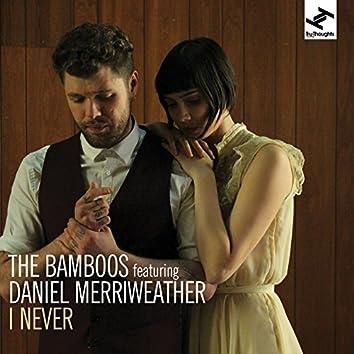 I Never (feat. Daniel Merriweather)