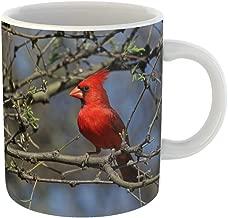 Emvency Coffee Tea Mug Gift 11 Ounces Funny Ceramic Northern Cardinal Cardinalis Sitting in Tree Shot Along the Santa Cruz River Gifts For Family Friends Coworkers Boss Mug
