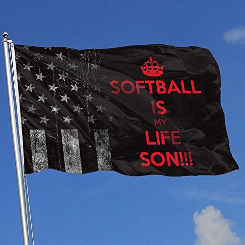wallxxj Garten Flagge Abgenutzte Usa-Flagge Softball Ist Leben Baseball Hockey Outdoor Home Decor Indoor Sport Basketball Hübsche 90X150Cm Bunten Druck