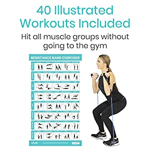 Vive Resistance Band Workout Poster - Laminated Bodyweight Hitt Exercise Chart For Abs, Glute, Back, Legs - Stretch Routine For Home Gym, Garage - 40 Educational Cable Muscle Trainings For Men, Women