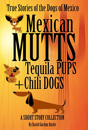 Mexican Mutts, Tequila Pups & Chili Dogs - True Stories of the Dogs of Mexico: Modern Dog Book (English Edition)