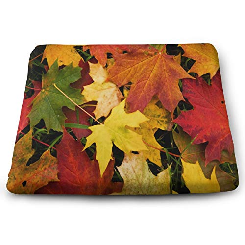 Dining Seat Cushion Comfy Memory Foam Chair Cushions Autumn Leaves Best Car Seat Cushion Cover Office Chair Pad for Hardwood Floors