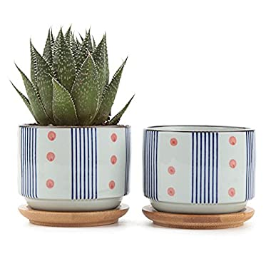 T4U 3 inch Ceramic Japanese Style Serial No.5 Succulent Plant Pot/Cactus Plant Pot Flower Pot/Container/Planter White Package 1 Pack of 2