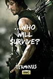 Grupo Erik Editores The Walking Dead Daryl Survive Poster