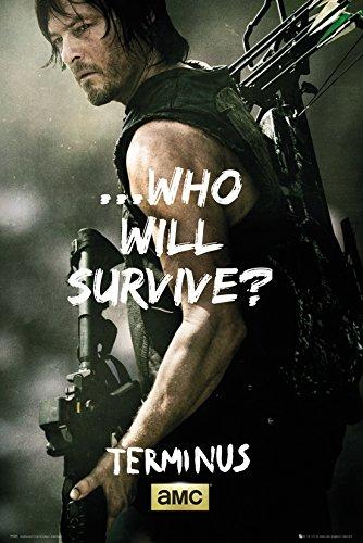 Grupo Erik Editores The Walking Dead Daryl Survive Poster