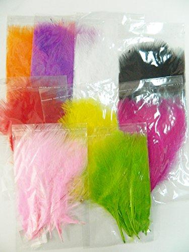 90 plumes d' oiseaux teint coloré 16cm 9 couleurs déguisement