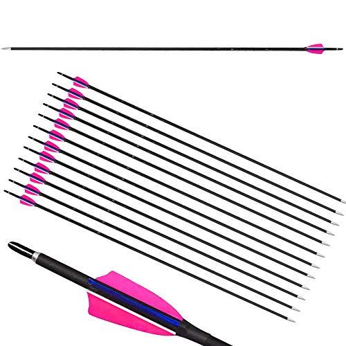 ZSHJGJR 12pcs 31inch Bogenschießen Carbon Pfeile Jagd Pfeile 900 Spine Bogenpfeile mit Pfeilspitzen Naturfeder für Compound und Recurve Bogen (Rosa)