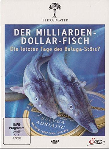 Der Milliarden-Dollar-Fisch - Die letzten Tage des Beluga-Störs? - Terra Mater