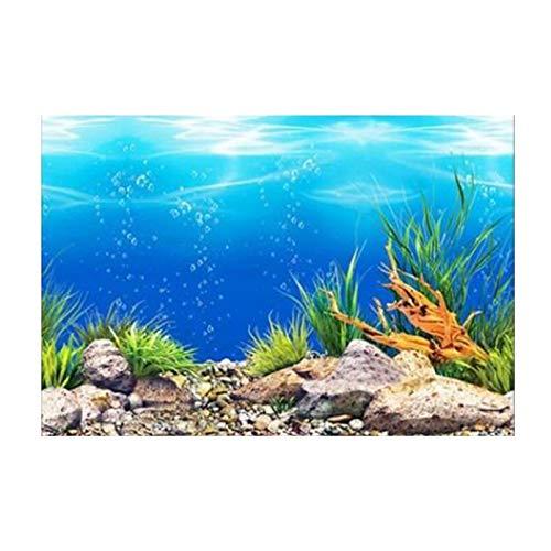Fenteer Aquarium Fond Fish Tank Autocollant Papier Peint Décoration Photo PVC Adhésif sous-Marine Affiche Contexte Décor Photos, Facile à Appliquer et à - 60x102cm