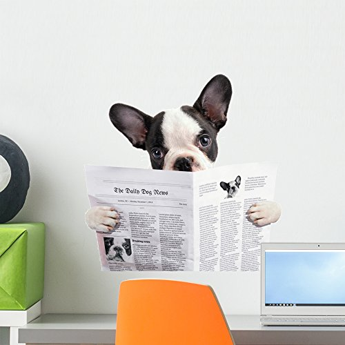 Wallmonkeys FOT-73494758-18 WM359746 French Bulldog Reading Newspaper Over White Peel and Stick Wall Decals H x 18 in W, 18' 18' W-Small