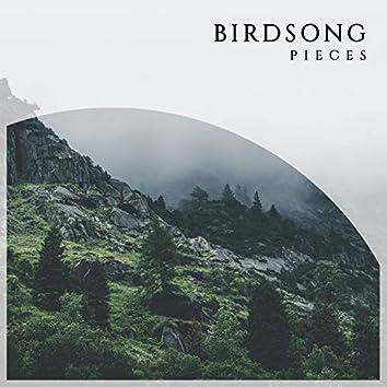 Reflective International Birdsong Pieces