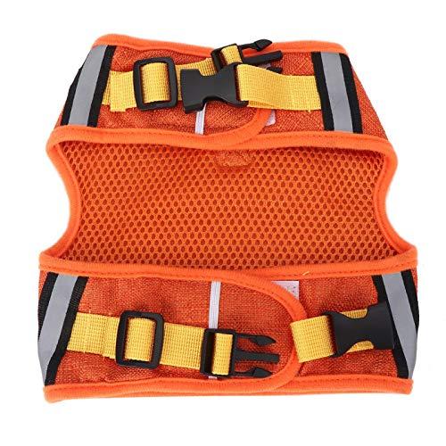SALUTUYA 3 Größen und 2 Farben, Dog Traction Rope Set mit Gurtzeug und Gurtzeugset Breathable Mesh Harness Strap,(Orange, L)