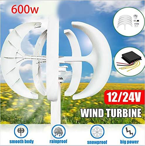 Tqing Aerogenerador Generador Linterna, 600W 12 / 24V generador de turbina de Viento Linterna 5 Cuchillas Kit de Motor de Eje Vertical con el regulador para el hogar Farola