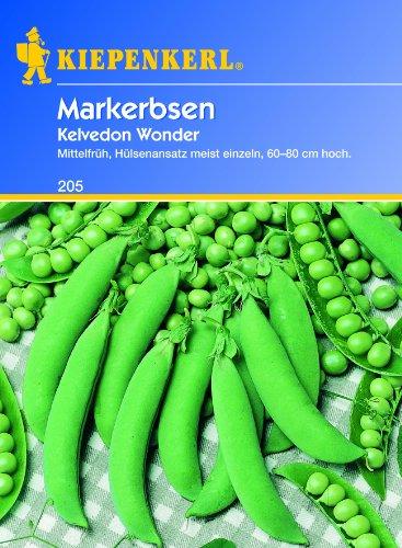 Markerbse W.Von Kelvedon