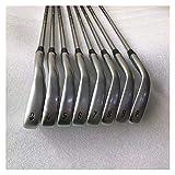YDL Conjunto De Planchas De Golf Apex CF19 Silver Golf Clubs Hierro Set Apex CF 19 3-9P 8PCS Forjado con Acero/Eje De Grafito Encuadre De Cabeza (Color : NS Pro 950 R)