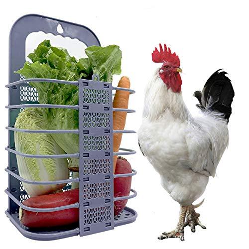Xinapy Panier d'alimentation de Légumes de Poulet Mangeoire pour Animaux de Compagnie Suspendue Pliable Porte-Fruits de Brochette de Légumes pour Les Poules de Lapin Grands Oiseaux